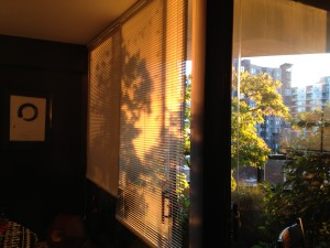 Warm afternoon sun at 504